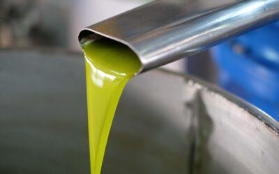 PAC post 2020, elementi per una nuova strategia per il settore olivicolo-oleario